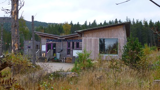 Creative Writing Workshop at Abriachan Forest Trust