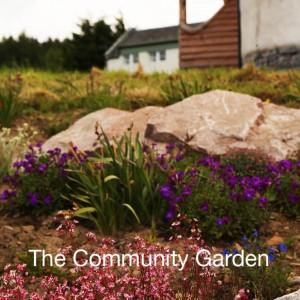 the-community-garden
